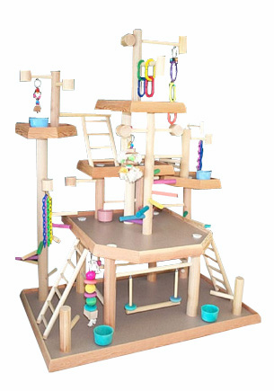 Bird playgyms includes