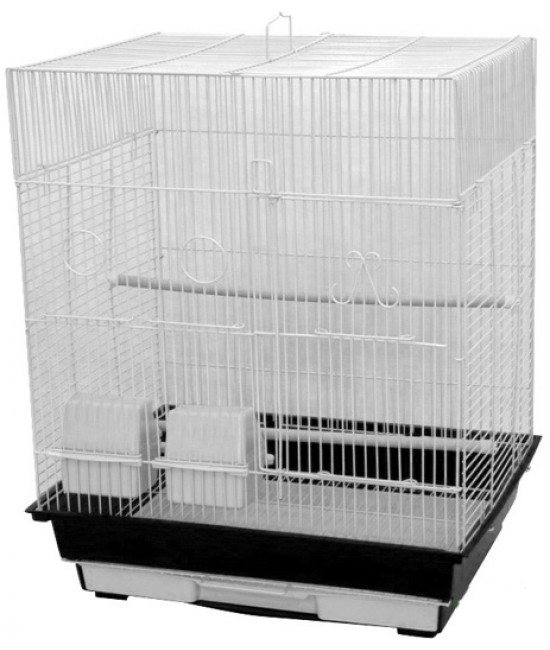 AE Flat Top Cage Finches