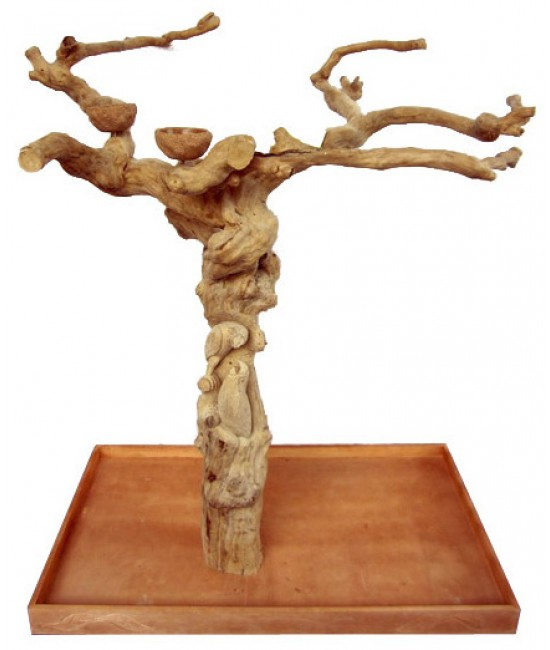 AE Medium Carved Java Wood Tree