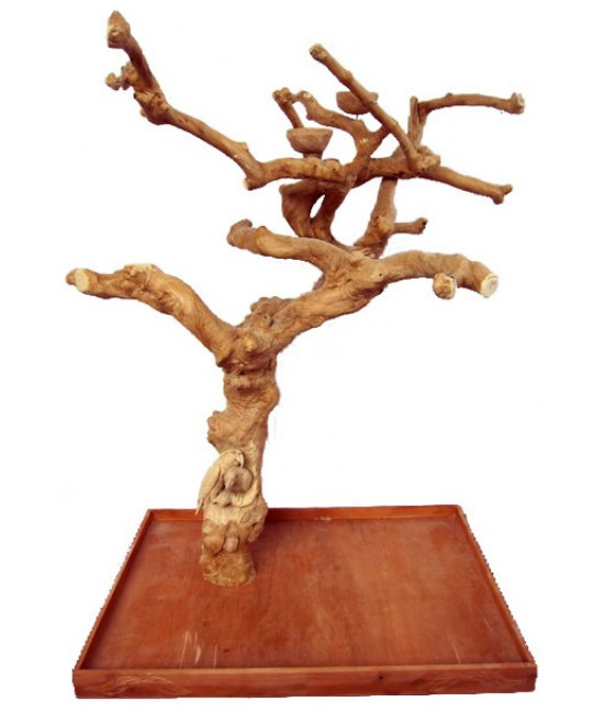 AE Large Carved Java Wood Trees