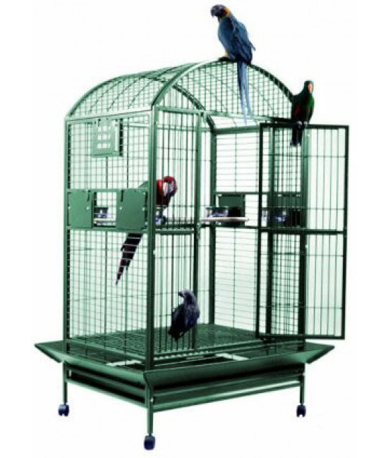 AE Dometop African Greys Cage 36x28