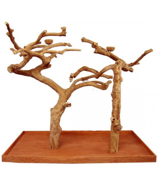 AE Double Java Wood Tree