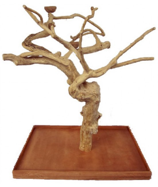 AE Large Java Wood Tree