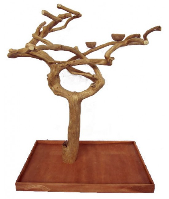 AE Single Java Wood Tree