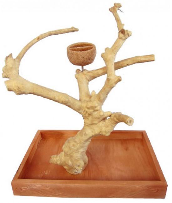 AE Table Top Java Wood Tree