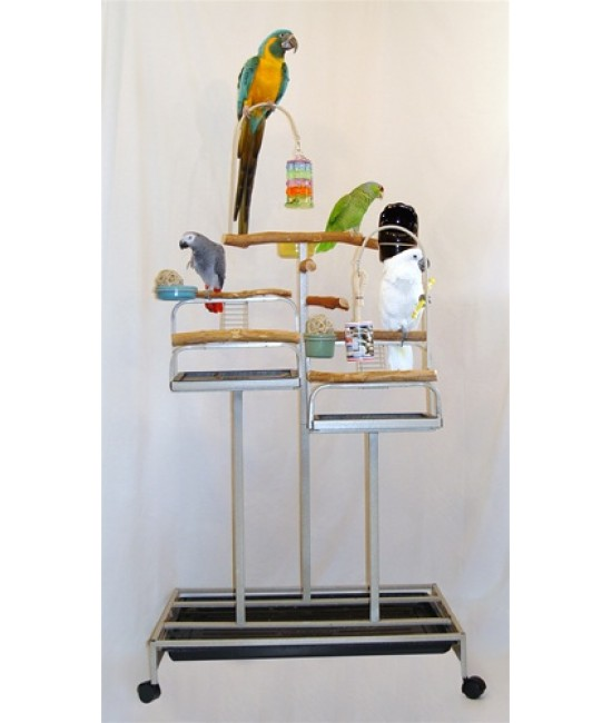 mango deluxe foraging birds station
