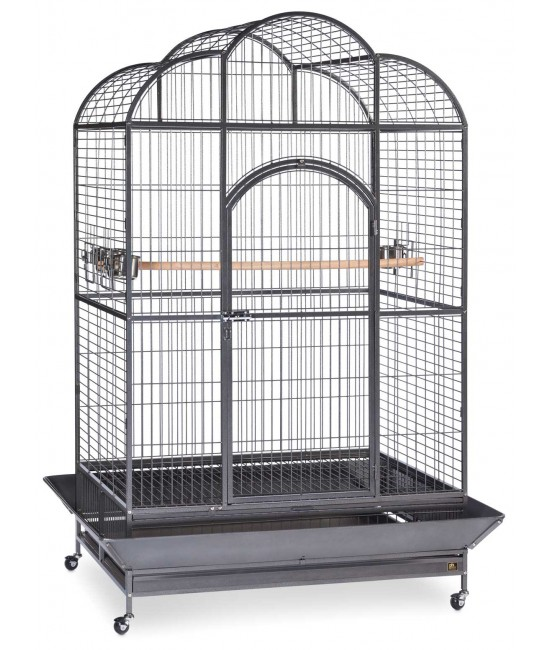 Silverado Extra Large Macaw Parrot Cage By Birdscomfort Com
