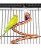 "Economy Parrot Play Top Bird Cage 61"" Black"