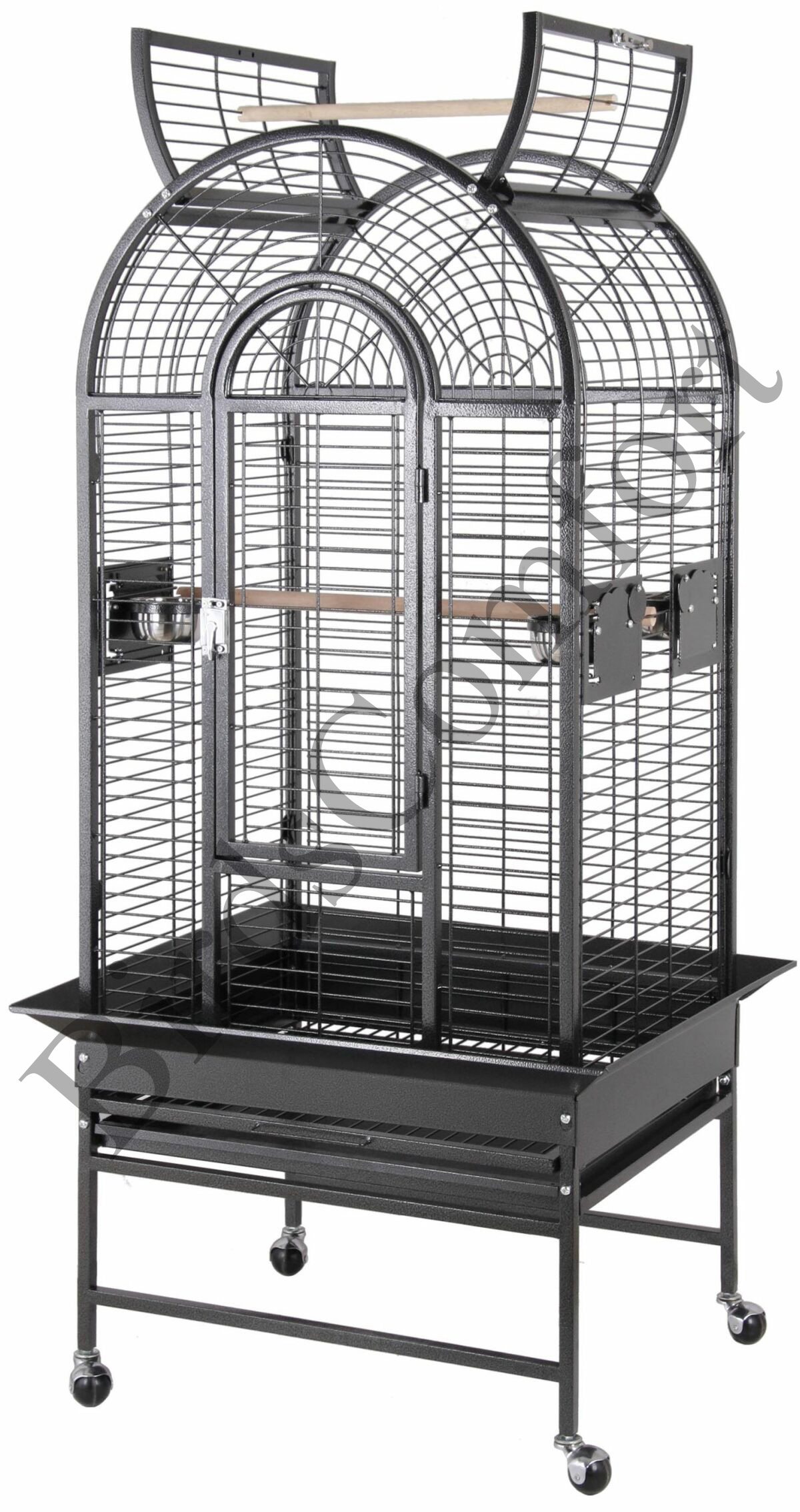 Exotic Birds For Sale >> HQ Open Parrot Bird Cages 34x21 - by BirdsComfort.com
