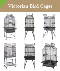 Victorian Bird Cages