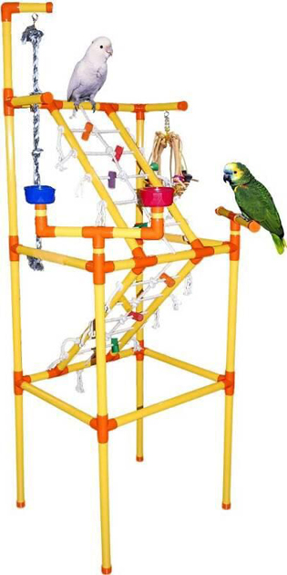 Play Gym For Birds