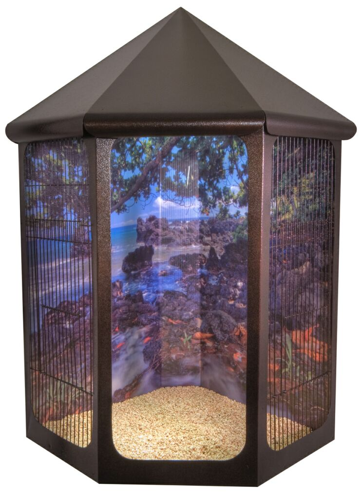 Finch Cages with Plexiglass http://www.birdscomfort.com/vision_bird_cages.html
